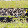 Asia Farmer using tiller tractor in rice field — Stock Photo #67112319