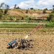 Tiller tractor in rice field — Stock Photo #74207045
