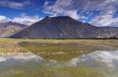 Reflection of lake — Stock Photo