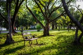Chair in the park during sunset — Stock Photo