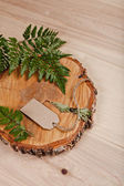 Blank tag on wooden background with fern and cut down tree — Stock fotografie