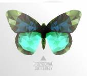 Color butterfly flying — Stock Vector