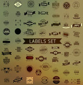 集复古老式彩带和标签 — 图库矢量图片
