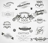 Набор каллиграфических элементов для проектирования — Cтоковый вектор