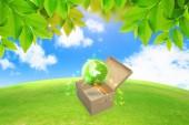 Green globe in box.green energy concept  — Stock Photo