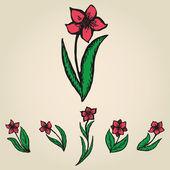 Floral doodling flowers like narcissus set — Stock Vector