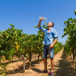 Heat exhausted young farmer cooling himself in vineyard. — Stock Photo #66354203