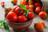 Fresh heirloom tomatoes with basil — Stock Photo