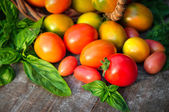 Multicolored tomatoes on wooden background — Stock Photo
