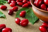 Fresh cornel berries in brown bowl — Stockfoto