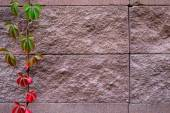 Background of decorate sand stone wall surface — 图库照片