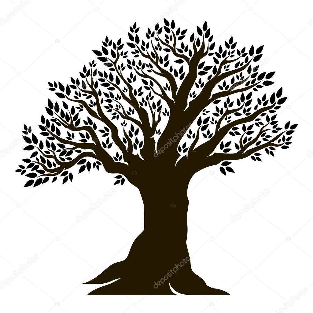 美丽的橄榄树 — 图库矢量图像08