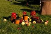 Autumn harvesting in the garden — Stock Photo