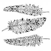 Decorative feathers, vector set. Hand-drawn illustration. Black outline. — Stock Vector