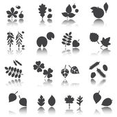 Silhouette leaves, vector set, shadow reflection. e p s 1 0 — Stock Vector