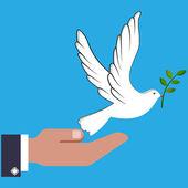 Ręką człowieka posiadającego biała gołębica — Wektor stockowy