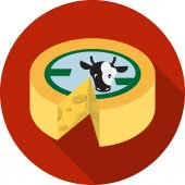 Vector Wheel of Cheese — Stock Vector