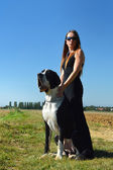 Young woman and big dog — Stock Photo