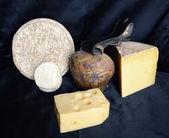 Assortment of mountain cheese — Stock Photo