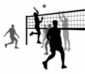 Volleyball 8 — Stock Vector