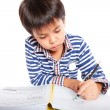 A young boy doing homework on a white background. — Stock Photo #52846477
