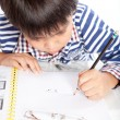 A young boy doing homework on a white background. — Stock Photo #52846647