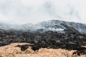 Smoke and fire burning pile of grass. — Stock Photo