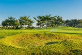 полив в гольф-поля — Стоковое фото