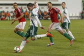 Hungary vs. Northern Ireland UEFA Euro 2016 qualifier football m — Stock Photo