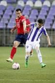 Minnesplakett vs. Videoton Otp Bank ligan fotbollsmatch — Stockfoto