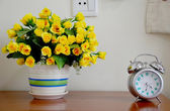 Alarm Clock and Flower vase — Stock Photo