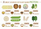 8 sources of plant based protein Illustrator — Stock Vector