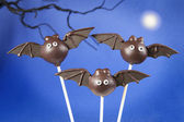 Bat cake pops — Stock Photo