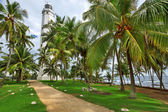 Lighthouse surrounded by palm trees — 图库照片