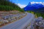 Icefield road — Stock Photo