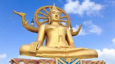 Big buddha statue — Stock Video
