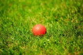 Orange golf ball on the green — Foto de Stock