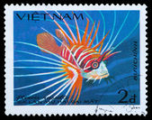 stamp series saltwater fish — Stock Photo