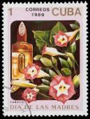 花卉香水 — 图库照片