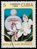 Kwiatowy perfumy — Zdjęcie stockowe