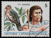 History of Latin America — Stock Photo