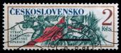 Folk revolt — Stock Photo