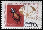 International Entomological Congress — Stock Photo