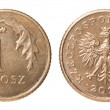 One Polish coin — Stock Photo #63800683