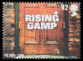 Show Rising Damp — Stock Photo