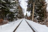 The railway between Bakuriani and Borjomi — Stock Photo