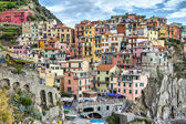 Houses on a cliff in Manarola, Italy — Stock Photo
