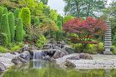 Cascade waterfall in Japanese garden in Bonn — Stock Photo