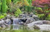Bonn Japon bahçe şelale çağlayan — Stok fotoğraf