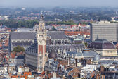 Aerial view on the centre of Lille, France — Stock Photo
